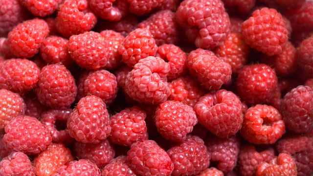 close up photo of raspberries